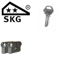 Lips cilinder 8062 gelijksluitend (2x) - SKG**