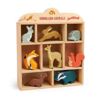 Tender Leaf Toys Woodland Animals In Display Shelf