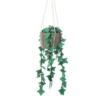 KidsDepot Hanging plant Hedera Felix Felt