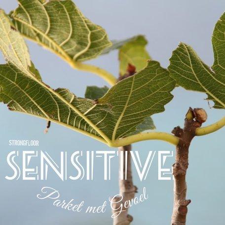 Sensitive parket