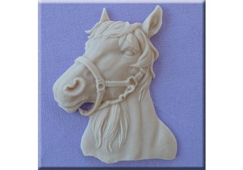 Horses head 1 AM0209