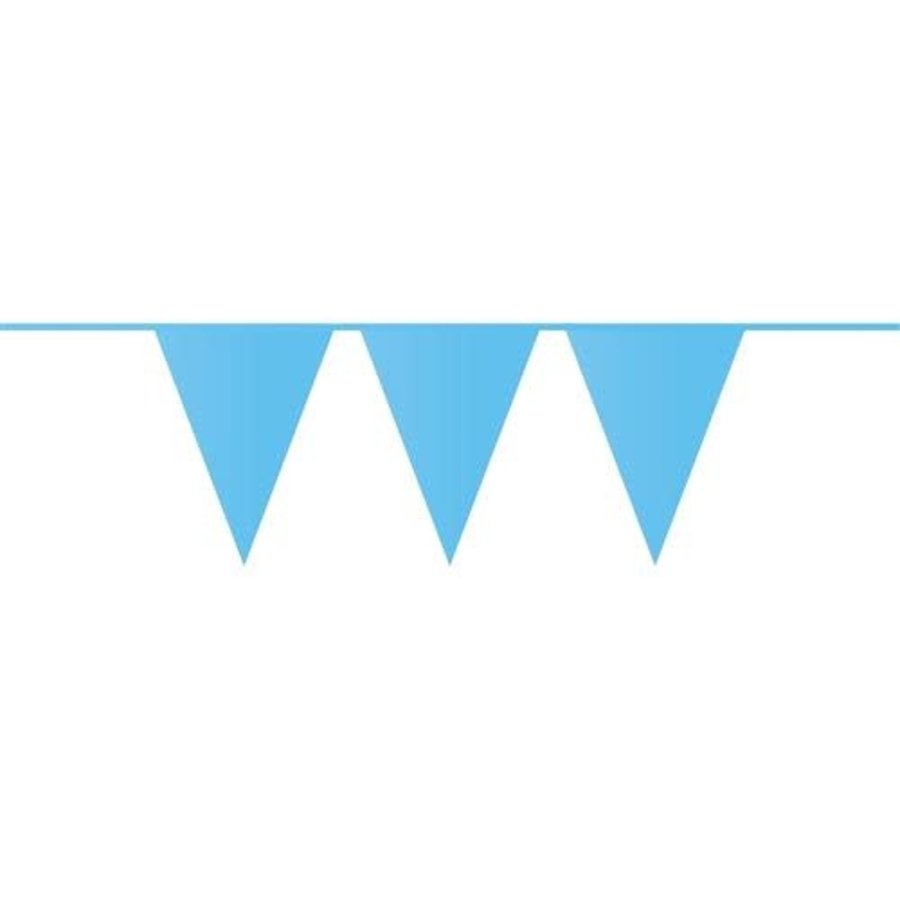 Vlaggenlijn PE blauw 10 m-1