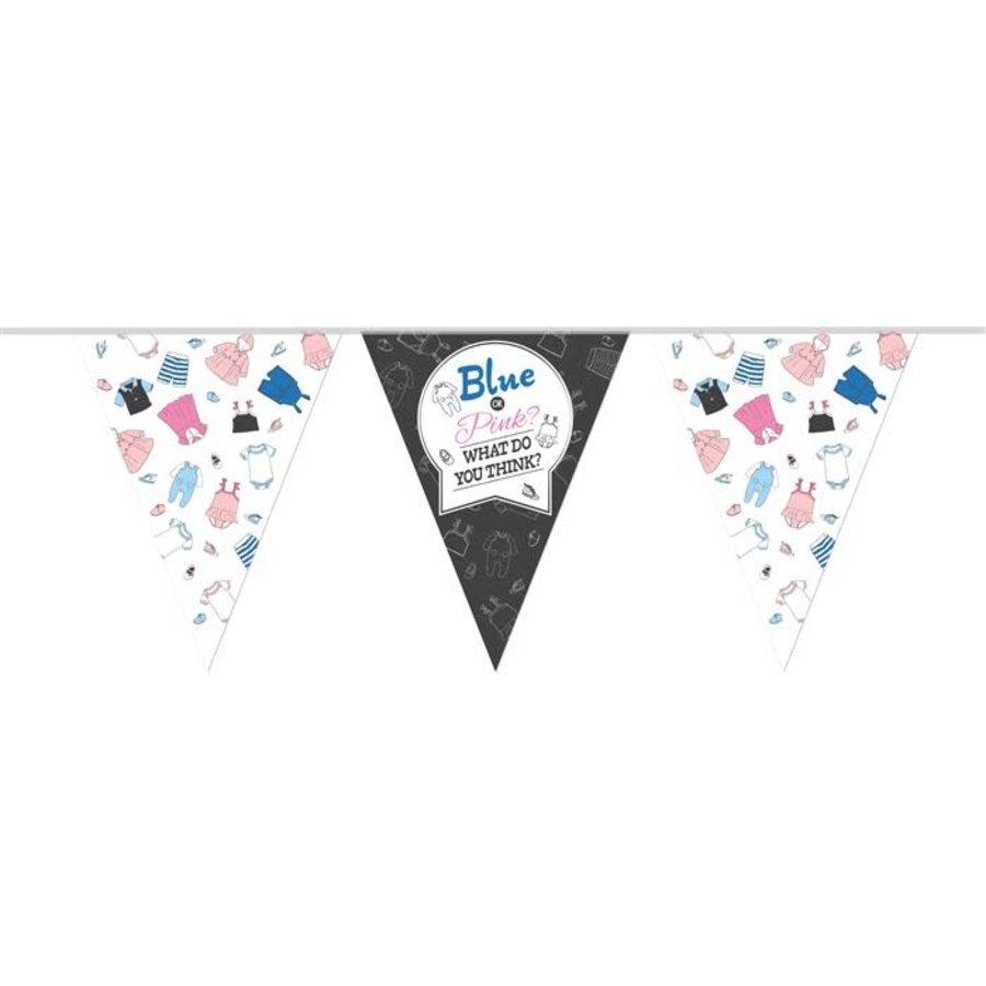 Vlaggenlijn Gender Reveal PE 10m-1