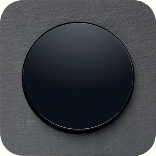 R1 leisteen zwart