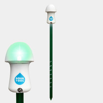 Olijfboom in Terra Cotta pot LED