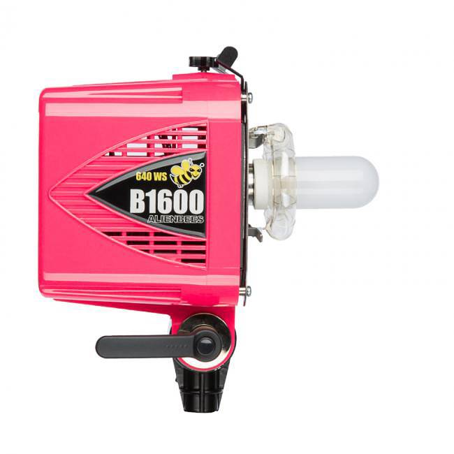 AlienBees Flash Unit B1600-1
