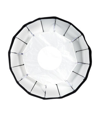 "Paul C Buff 24 ""weiß faltbare Beauty Dish"