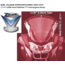 ZTECHNIC-VSTREAM R1200RT  screen  Vstream 71,1 x 66cm