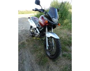 XF 650 Freewind