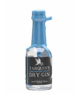 Tarquin's mini