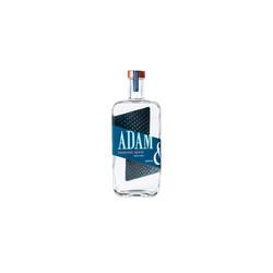 Adam innocent