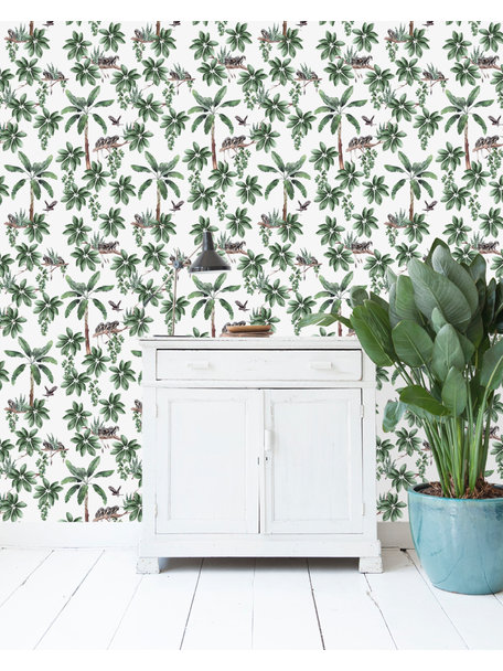 Creative Lab Amsterdam Curious little Monkey Wallpaper on roll