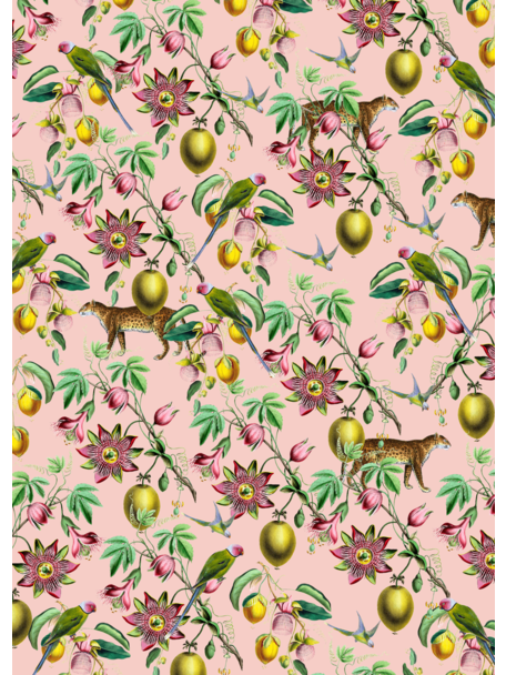 Creative Lab Amsterdam Botanical Garden Wallpaper Mural