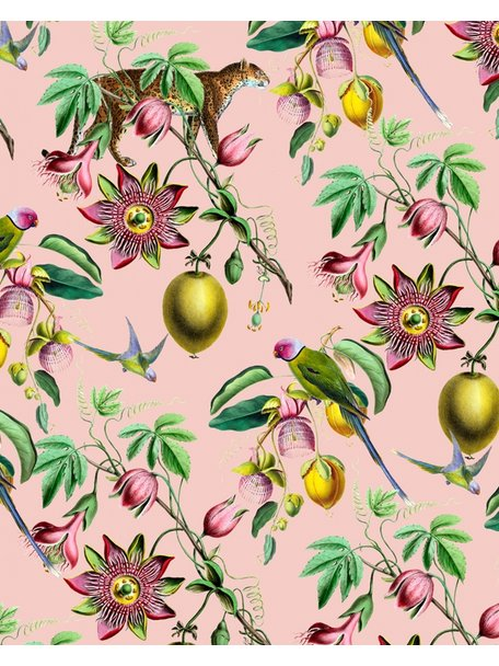 Creative Lab Amsterdam Botanical Garden Pink Wallpaper