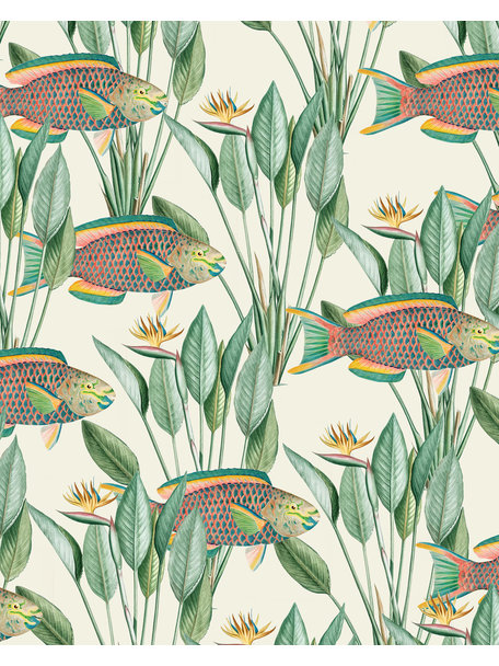 Creative Lab Amsterdam Parrot Fish Wallpaper