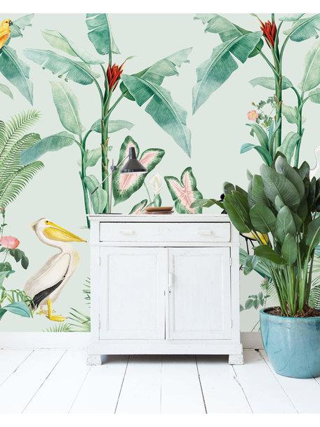 Creative Lab Amsterdam Pelican Wallpaper