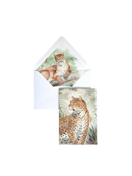 Old Cat Greeting Card - Hooray - per 6
