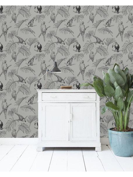 Tropic Tucan Taupe Wallpaper