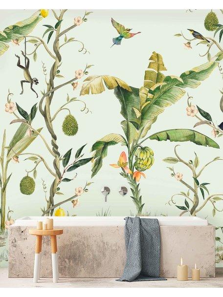 Monkey Life Wallpaper