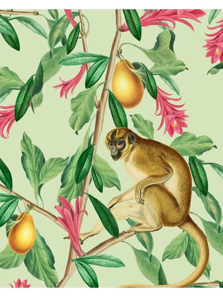 Creative Lab Amsterdam Tropical Monkey Bathroom Wallpaper