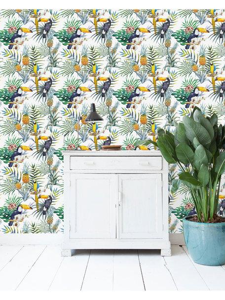 Tucan CLA Wallpaper