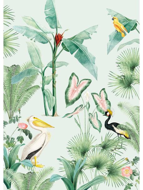 Creative Lab Amsterdam Pelican Wallpaper Mural