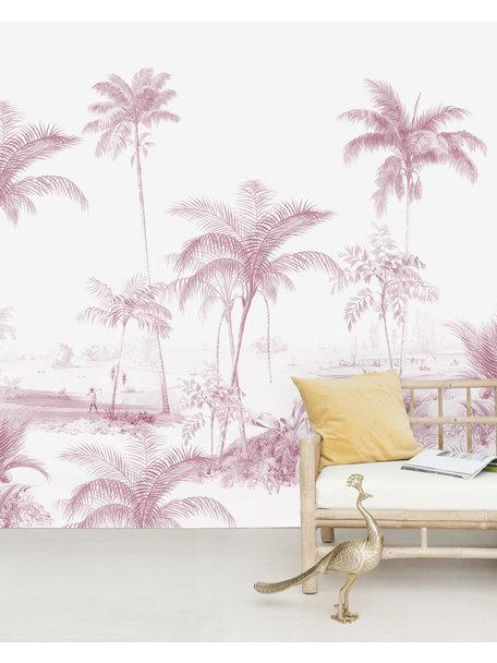 Exotic palms Pink