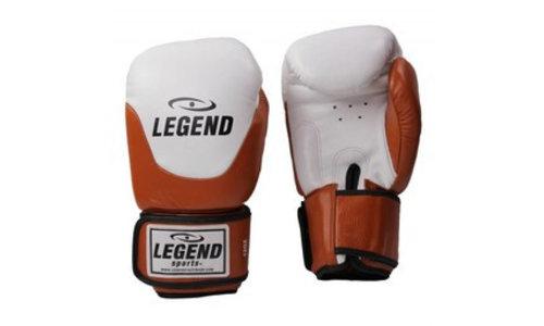 Muay Thai bokshandschoenen