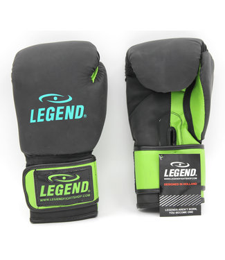 Legend Sports Bokshandschoenen LegendDry & Protect Mat zwart/groen