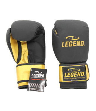 Legend Sports Bokshandschoenen LegendDry & Protect Mat zwart/Goud
