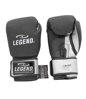 Legend Sports Bokshandschoenen LegendDry & Protect Mat zwart/Zilver