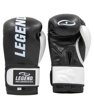 Legend Sports Bokshandschoenen Legend Impact Protect zwart/wit