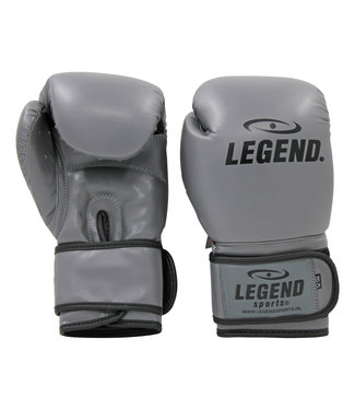 Legend Sports Bokshandschoenen LegendClima & Protect Grijs