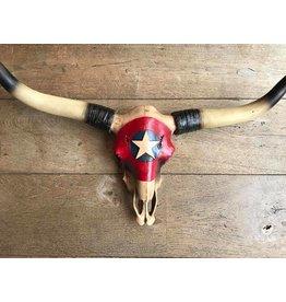 Damn Skull groot ster 70 x 40 cm