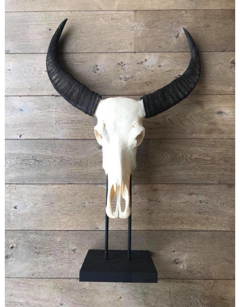 Damn Skull op standaard XL groot