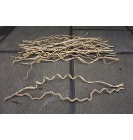Damn Liana wooden branch 2 meters