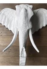 Damn Olifant Big MaMa White