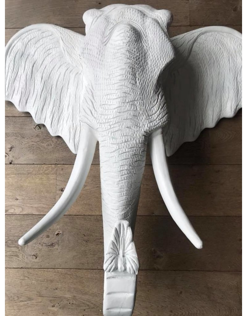 Damn Elephant Big MaMa White