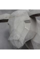 Damn Skull betonlook schaap