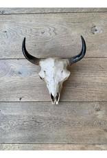 Damn Skull effen
