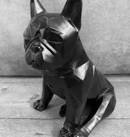 Damn Hond zwart