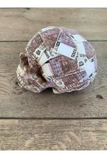 Damn Spaarpot eurobiljetten