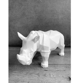 Damn Rhinoceros white