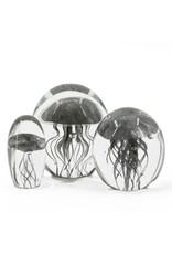 Damn jellyfish in glass XL - Copy - Copy - Copy - Copy - Copy - Copy - Copy - Copy - Copy - Copy - Copy - Copy - Copy - Copy - Copy