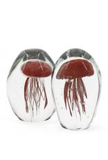 Damn jellyfish in glass XL - Copy - Copy - Copy - Copy - Copy - Copy - Copy - Copy - Copy - Copy - Copy - Copy - Copy - Copy - Copy - Copy - Copy - Copy - Copy - Copy - Copy - Copy - Copy - Copy