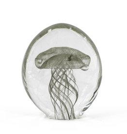Damn Jellyfish in glass XL - Copy - Copy - Copy - Copy - Copy - Copy - Copy - Copy - Copy - Copy - Copy - Copy - Copy - Copy - Copy - Copy - Copy - Copy - Copy - Copy - Copy - Copy - Copy - Copy - Copy - Copy - Copy - Copy - Copy - Copy - Copy
