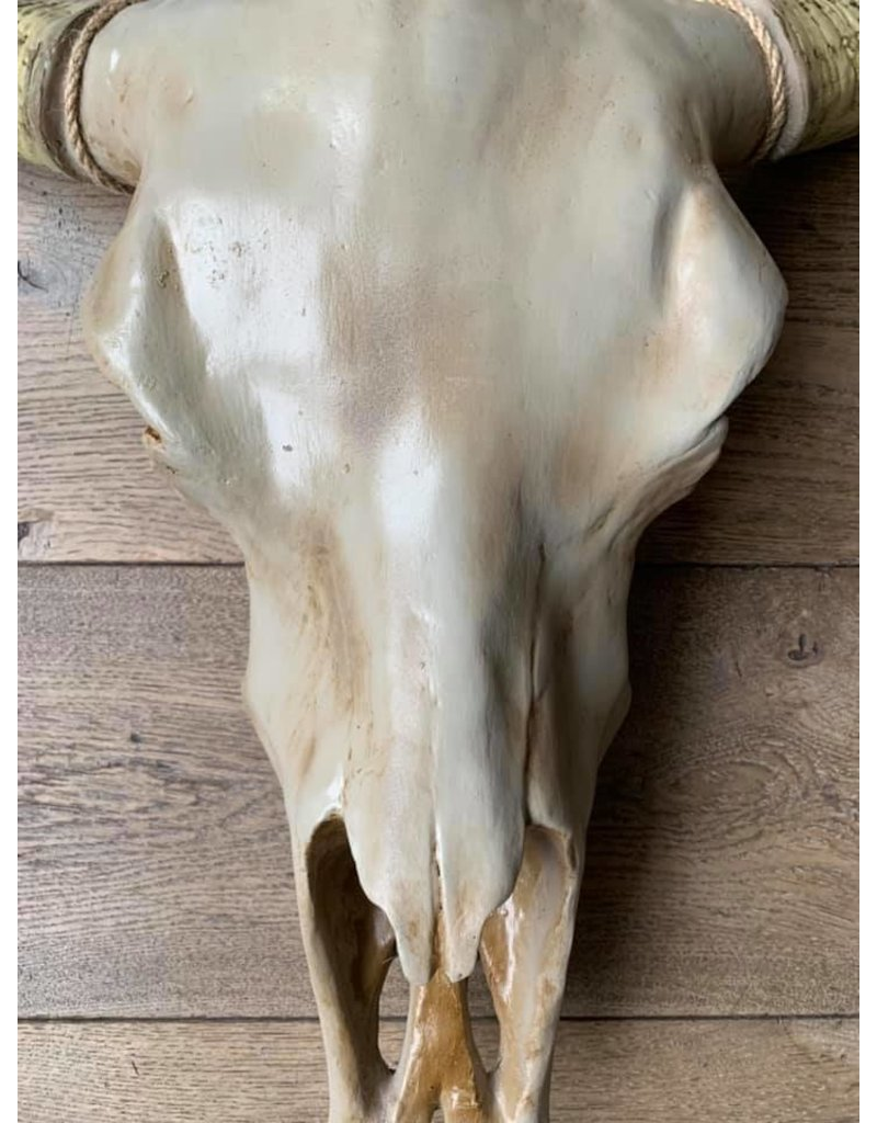 Damn Skull effen 74 x 80 cm  bruine kop