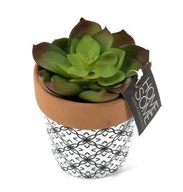 Damn Fake plant in 60 cm pot - Copy - Copy