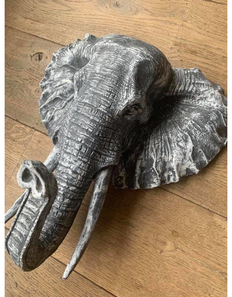 Damn elephant gray