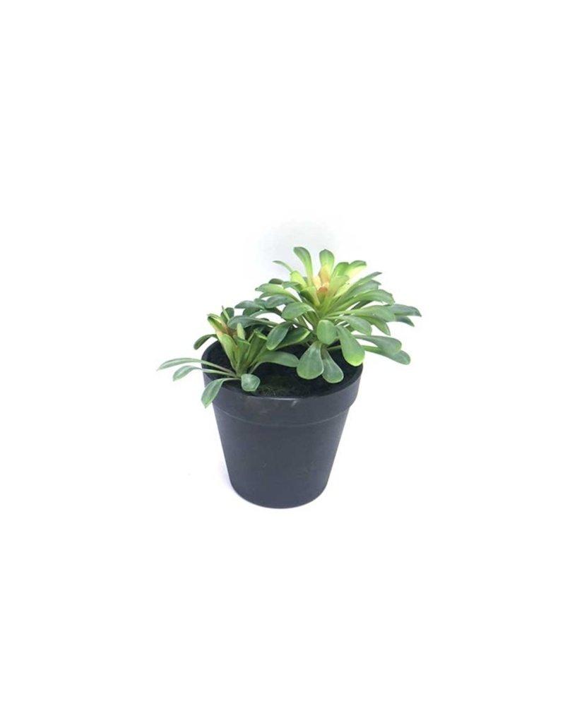 Damn Fake plant in pot